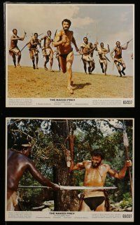 7s020 NAKED PREY 12 color 8x10 stills '65 Cornel Wilde stripped in Africa running from killers!