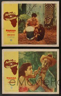 7w866 AFRICAN TREASURE 5 LCs '52 Johnny Sheffield as Bomba of the Jungle + Kimbbo the Chimp!