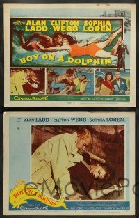 8z103 BOY ON A DOLPHIN 8 LCs '57 great images of scuba divers Alan Ladd & sexiest Sophia Loren!