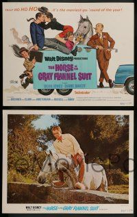 8z234 HORSE IN THE GRAY FLANNEL SUIT 8 LCs '69 Walt Disney, images of Dean Jones, Diane Baker!