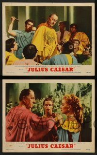 8z668 JULIUS CAESAR 6 LCs '53 Marlon Brando, James Mason & Greer Garson, Shakespeare!