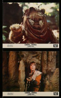 9a041 CARAVAN OF COURAGE 8 8x10 mini LCs '84 An Ewok Adventure, Star Wars, great images!