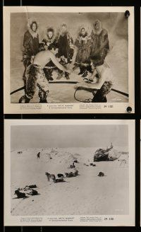 9s431 ARCTIC MANHUNT 7 8x10 stills '49 Mikel Conrad in Alaskan Northern Yukon adventure!