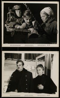 9s837 DOCTOR ZHIVAGO 3 8x10 stills '65 Omar Sharif, Julie Christie, David Lean classic epic!