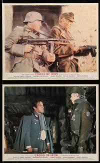 9s030 CROSS OF IRON 8 color English FOH LCs '77 Sam Peckinpah, James Coburn as Nazi soldier!