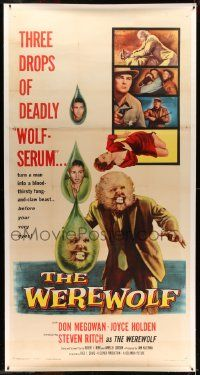 2j065 WEREWOLF linen 3sh '56 cool art of three drops of deadly wolf-serum turning man into monster!