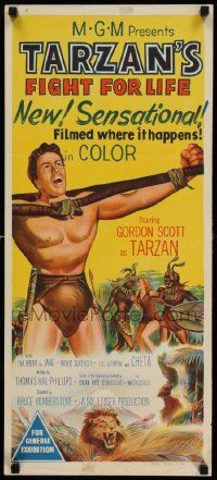 2m041 TARZAN'S FIGHT FOR LIFE Aust daybill '58 close up art of Gordon Scott bound/arms outstretched!