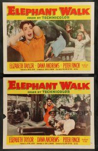 2w873 ELEPHANT WALK 2 LCs '54 Elizabeth Taylor w/ Dana Andrews and lots of pachyderms!