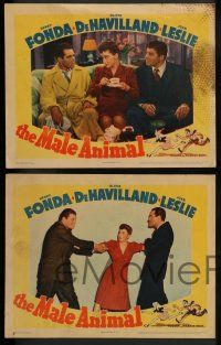 2w637 MALE ANIMAL 4 LCs '42 Fonda, Olivia de Havilland, Leslie, Carson, Pallette, James Thurber!