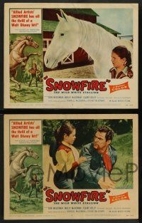 2w355 SNOWFIRE 8 LCs '58 McGowan family directs & stars, cool images of wild white stallion!
