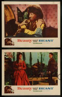 3t046 BEAUTY & THE BEAST 8 LCs '62 Mark Damon turns into a werewolf at night, Joyce Taylor