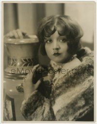 4s022 ALICE WHITE deluxe 11x14 still '29 close portrait wearing cool fur coat by Harold Dean Carsey!