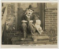 6d019 DOG'S LIFE 8x9.75 still R20s classic image of Charlie Chaplin as Tramp sitting with his dog!