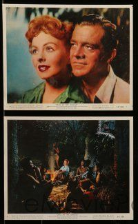 6m532 DUEL IN THE JUNGLE 8 color 8x10 stills '54 Dana Andrews & sexy Jeanne Crain in Africa!