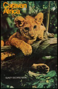 7g029 CARAVAN AFRICA 24x37 travel poster '84 wonderful image of lion cub hanging on tree branch!