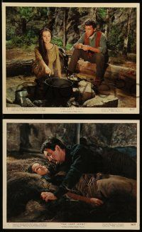 8d032 LAST HUNT 9 color 8x10 stills '56 Robert Taylor, Stewart Granger, Debra Paget, Tamblyn!