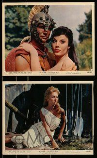 8x011 GIANT OF MARATHON 11 color 8x10 stills '60 La Battaglia di Maratona, Steve Reeves, Demongeot!