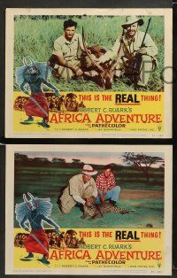 9r038 AFRICA ADVENTURE 8 LCs '54 this is the REAL Africa, the living jungle, wild animal images!