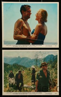 7s038 BRIDGE ON THE RIVER KWAI 8 color 8x10 stills R1964 William Holden, Guinness, David Lean!