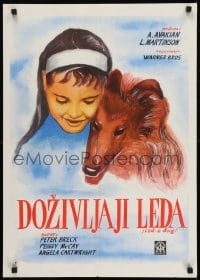 8p286 LAD A DOG Yugoslavian 20x28 1961 wonderful completely different Collie dog artwork!
