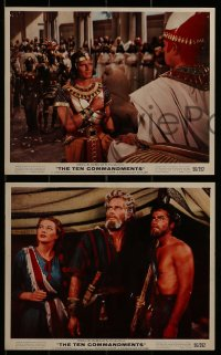 1s009 TEN COMMANDMENTS 11 color 8x10 stills 1956 Cecil B. DeMille, Charlton Heston, Brynner, Baxter!