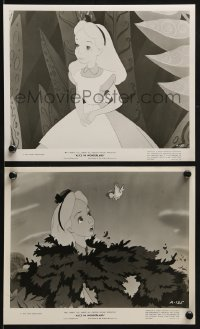 2x775 ALICE IN WONDERLAND 2 8x10 stills 1951 Walt Disney animated classic, great cartoon images!