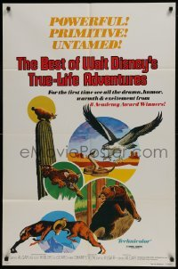 2x268 BEST OF WALT DISNEY'S TRUE-LIFE ADVENTURES 1sh 1975 powerful, primitive, cool animal art!