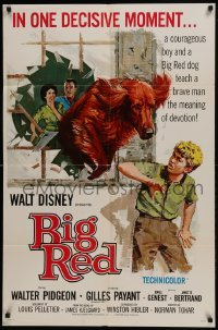 2x269 BIG RED 1sh 1962 Disney, Walter Pigeon, artwork of Irish Setter dog jumping through window!