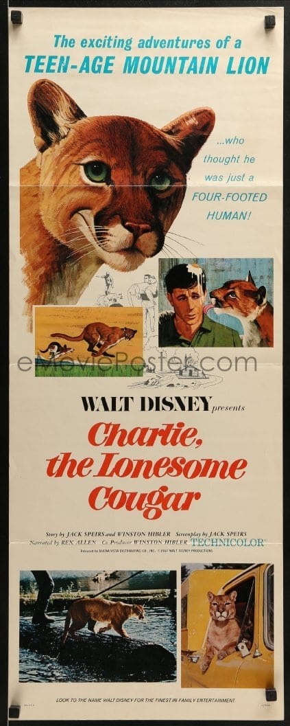 charlie the lonesome cougar 1967 full movie