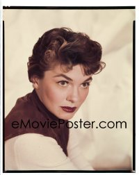 4d041 3 RING CIRCUS 8x10 transparency 1954 Paramount head & shoulders portrait of Joanne Dru!