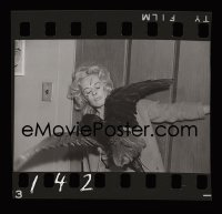 4d315 BIRDS group of 10 35mm negatives 1963 Tippi Hedren, includes 4 candids, 2 w/ Alfred Hitchcock!