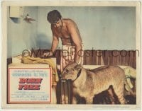 4p110 BORN FREE LC 1966 great close up Bill Travers with Elsa the lioness in his room!
