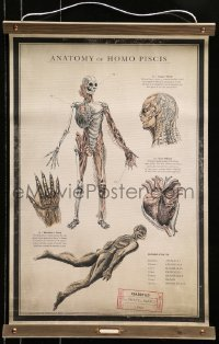 5g001 SHAPE OF WATER 18x27 special promotional poster 2017 anatomy chart of the Amphibian Man!