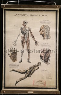 5z784 SHAPE OF WATER 18x27 special promotional poster 2017 anatomy chart of the Amphibian Man!