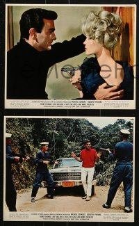 7d034 KISS THE GIRLS & MAKE THEM DIE 9 color 8x10 stills 1966 Mike Connors & sexy Dorothy Provine!