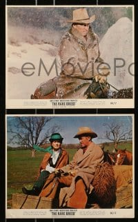 7d036 RARE BREED 9 color 8x10 stills 1966 Texas leader James Stewart, Maureen O'Hara, Brian Keith!