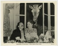 7h096 AT THE CIRCUS 8x10.25 still 1939 zany Groucho Marx & Margaret Dumont by giraffe in window!
