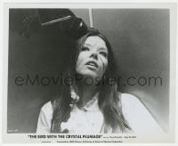 7h144 BIRD WITH THE CRYSTAL PLUMAGE 8.25x10 still 1970 Eva Renzi w/cuts on her face, Dario Argento!