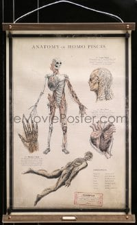 7k001 SHAPE OF WATER 18x27 special promotional poster 2017 anatomy chart of the Amphibian Man!