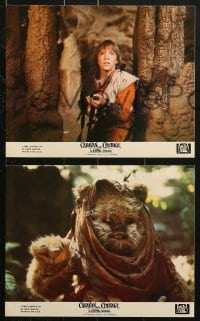 9a071 CARAVAN OF COURAGE 8 8x10 mini LCs 1984 An Ewok Adventure, Star Wars, great images!