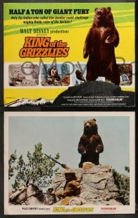 9k031 KING OF THE GRIZZLIES 9 LCs 1970 Walt Disney, half a ton of giant fury, ruler of the Rockies!