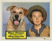 9y738 OLD YELLER LC R1974 best portrait of Tommy Kirk & Walt Disney's most classic canine!