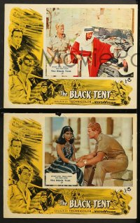 1d056 BLACK TENT 8 English LCs 1957 soldier Anthony Steele marries the Sheik's daughter, cool art!