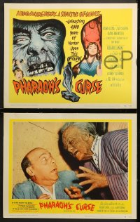 1d227 PHARAOH'S CURSE 8 LCs 1956 a blood-sucking mummy & a seductive cat-goddess, cool horror images!