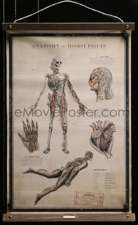 2k021 SHAPE OF WATER 18x27 special promotional poster 2017 anatomy chart of the Amphibian Man!