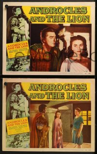 2r039 ANDROCLES & THE LION 8 LCs 1952 Victor Mature, beautiful Jean Simmons, border art of big cat!