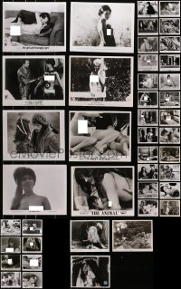 2y496 LOT OF 43 SEXPLOITATION MOVIE 8X10 STILLS 1960s-1980s great images with lots of nudity!