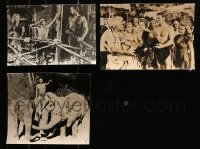 2y536 LOT OF 11 TARZAN JUNGLE MOVIE 8X10 STILLS 1950s-1960s Johnny Weissmuller, Buster Crabbe!