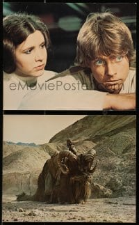 3a076 STAR WARS 2 color deluxe 8x10 stills 1977 Lucas classic epic, Luke, Leia, Tusken Raider!