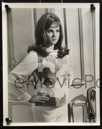 3a312 MADE IN PARIS 11 8x10 stills 1966 Richard Crenna, great images of super sexy Ann-Margret!